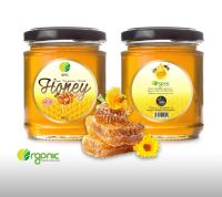 OTI Raw Wild Honey