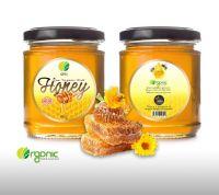 OTI Raw Wild Honey