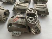 Titanium Alloy Implants In Biomedical Applications- EBM 3D Parts