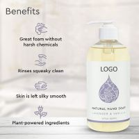 OEM Lavender & Vanilla Natural Liquid Hand Soap 12 Ounce Moisturizing Gel Hand Wash Antibacterial Sanitizer