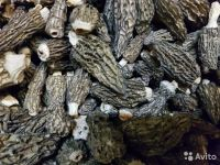 Conic morels (dried)
