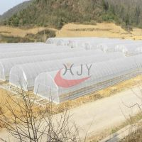Agricultural Single Span Plastic Film Greenhouse  Agricultural Single Span Greenhouse
