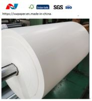 Large format white plotter paper roll wholesale in China