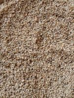 SESAME SEED FROM NIGERIA