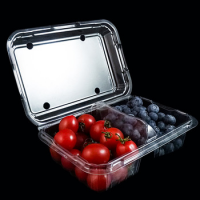 Vacuum Formed Blister Packaging Small Clear Rectangular Plastic Clamshell Box for Fruit Storage