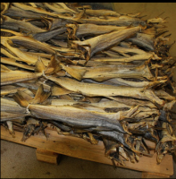 Fish Frozen dried fish