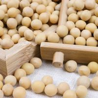 High Quality Hot Seller Poland certified organic raw soybeans