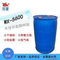 Waterborne epoxy resin