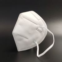 Protective KN95 Mask in stock fast delivery
