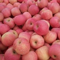 Grade A Royal Gala Apples