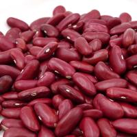 Wholesale Dried Dark Red Kidney Bean long shape Kidney Beans