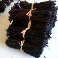 Premium Quality Madagascar Vanilla Beans