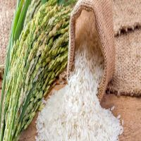 basmati rice price in thailand