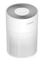 Indoor MINI PM2.5 room air purifier for allergen smoke dust for home