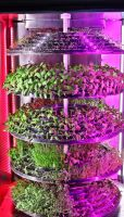 LEAFY PLANT SEEDLING MICROGREEN VEGETABLE GROWING MACHINE NURSERY TRAY INDOOR SOILLESS VERTICAL SYSTEM SMART VEGETABLE FRUIT LETTUCE HYDROPONIC PLANTER
