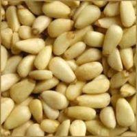 Eggplant Seeds/Forage Seeds/Bamboo Seeds/Marigold Seeds/Phacelia Seeds/Sacha Inchi/Tomato Seeds