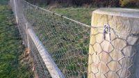 hexagonal wire netting/rabbit cage