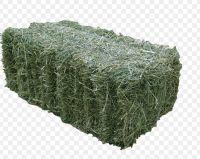 Alfalfa Hay/ Natural