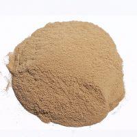 feed grade 40% 45% assay dried Brewer Yeast powder