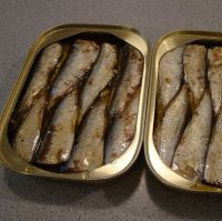 Canned food / Canned Fish / Canned Sardine/ Tuna/ Mackerel in tomato sauce/oil/ brine 155G 425G