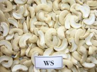 Dried style and raw processing kind VIETNAM CASHEW NUTS