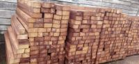 Quality sawn IROKO wood or sale