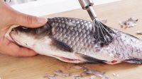 Fish Scales Ms.selena+84906086094