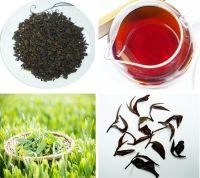 Black tea & green tea