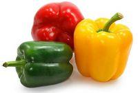 Bell Pepper (Capsicum)
