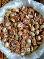 Dried Betel nuts/ Viet Nam betel nuts