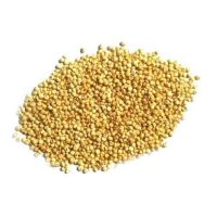 SORGHUM GRAIN MEAL