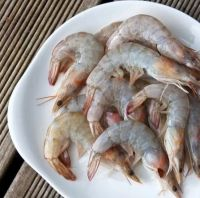 Seafood Frozen Quality Headless Tiger Shrimps & Prawns