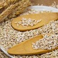 oats seeds
