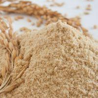 High Quality Wholesale Rice Bran