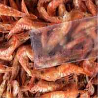 Hot sale dried shrimp