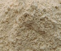 Dry Yeast for sale