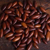 Top quality baru nuts for sale