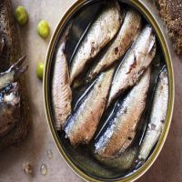 Season sardine wholesale canned sardine in hot oil chili