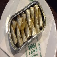 high quality canned mackerel/sardine in tomato sauce/in brine