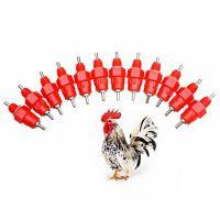 Practical Animal Drinker Feeder Stainless steel ball drinking device for chicken