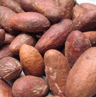 Bitter Kola Seed for sale cheap Price