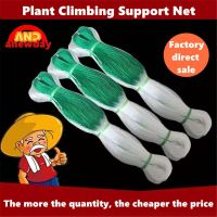 100 Meter Plant Climbing Support Net Plastics Nylon Trellis Grow Pea C