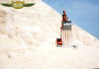 Raw Bulk Salt