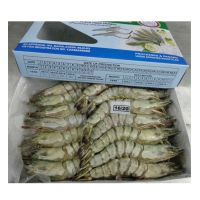 Black Tiger Shrimp for