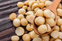 Organic Whole Raw Macadamia Nuts / 13-18mm Macadamia Nuts/Macadamia nut in shell, macadamia nut kernel