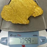 gold/gold bar/raw gold
