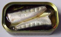 Canned Sardine in Brine- Canned Tuna- Canned Mackerel