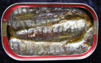 Canned Sardine in Brine- Canned Tuna- Canned Mackerel