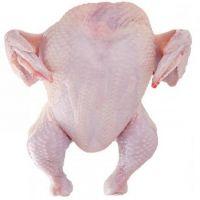 Top quality Frozen Whole Chicken/ Chicken Feet/ Wings/ Legs