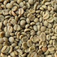 Arabica green coffee beans, oil seeds & sesam seeds